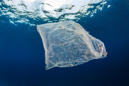 Marine Pollution - a discarded plastic packet floats in the ocean above an otherwise healthy tropical coral reef