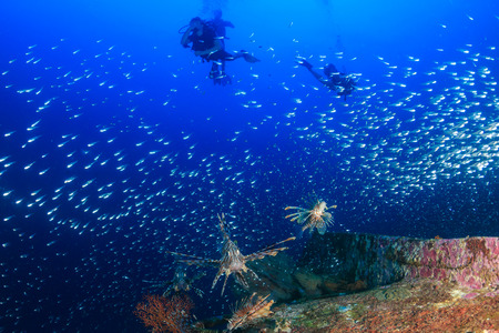 SCUBA divers, Lionfish and Glassfish on a coral reef Stock Photo