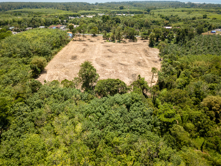 Rainforest Deforestation - Drone view of tropical rainforest cleared for illegal logging and palm oil plantations Banco de Imagens - 100286751