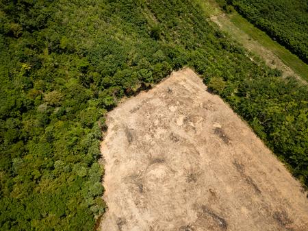Regenwoudontbossing - Drone-weergave van tropisch regenwoud dat is gekapt voor illegale houtkap en palmolieplantages Stockfoto
