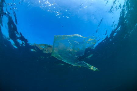 Plastic Pollution - a plastic bag floats in the ocean above a tropical coral reef