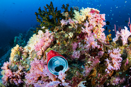 Discarded drink can polluting a colorful tropical coral reef Stock Photo