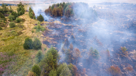 Aerial drone view of a wildfire in a grass and forested area