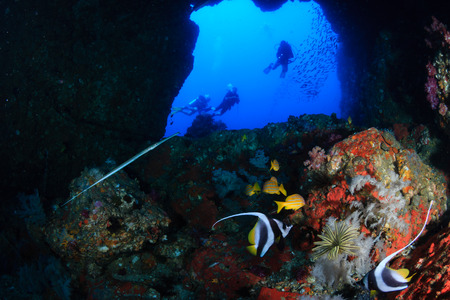 SCUBA divers exploring an underwater swim through and tropical coral reef as Western Rocky, Mergui Archipelago, Myanmar Reklamní fotografie
