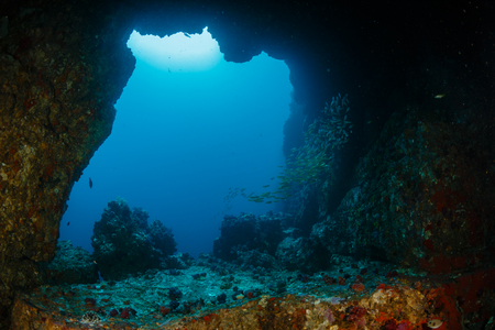An underwater archway at Western Rocky in the Mergui Archipelago, Myanmar Stock Photo