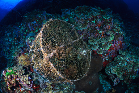 An old, abandoned fish trap on a damaged tropical coral reef
