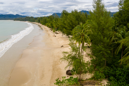 Aerial drone view of palm trees around a beautiful deserted tropical sandy beach