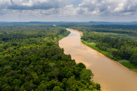 Aerial drone view of a long, brown winding river through tropical rainforest (Kinabatangan River, Borneo) Banque d'images