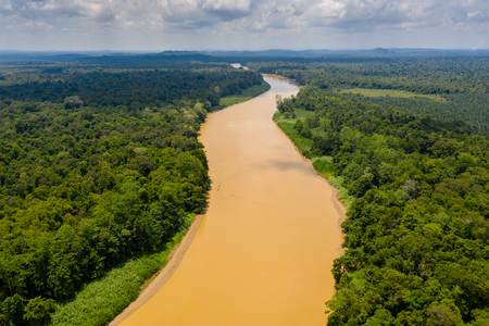 Aerial drone view of a long, brown winding river through tropical rainforest (Kinabatangan River, Borneo) Stock Photo