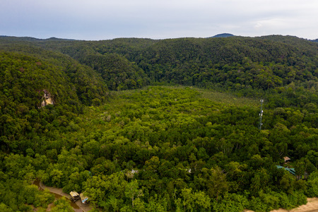 Aerial view of mangrove forest surrounded by lush tropical rainforest in Bako, Borneo