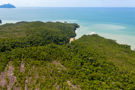 Aerial view of dense tropical rainforest leading to a remote, rough ocean coastline