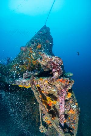 Schools of colorful tropical fish swarming around an old, broken underwater shipwreck Foto de archivo
