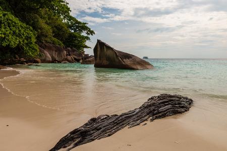 A beautiful, empty tropical sandy beach (Ko Miang, Similan Islands, Thailand)