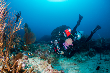 Underwater Photographer on a tropical coral reef Reklamní fotografie