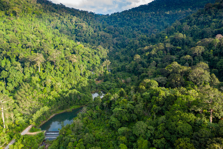 Aerial view of mountainous tropical rainforest and a small lake in Thailand Stok Fotoğraf
