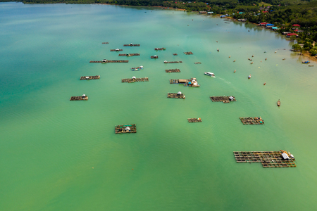 Aerial view of traditional floating fish farms in a shallow ocean in Thailand