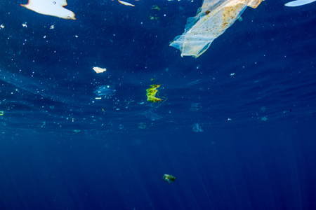 Plastic bags and debris floating on the surface of a clear, blue tropical ocean