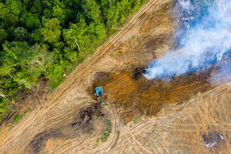 Aerial view of deforestation.  Rainforest being removed to make way for palm oil and rubber plantations Фото со стока