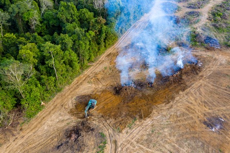 Top down aerial view of deforestation - jungle being removed and burnt to make way for plantations in Thailand