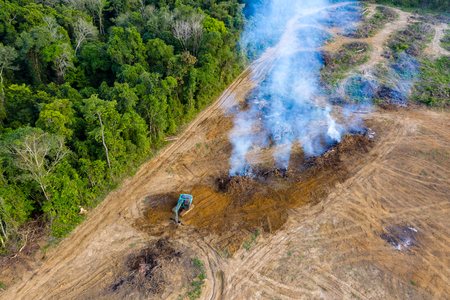 Aerial view of deforestation.  Rainforest being removed to make way for palm oil and rubber plantations Banque d'images