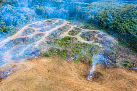 Aerial view of deforestation.  Rainforest being removed to make way for palm oil and rubber plantations Stock Photo