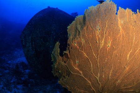 SCUBA divers exploring a deep, underwater shipwreck in a clear, tropical ocean