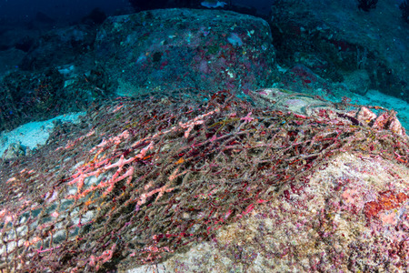 An old abandoned ghost fishing net entangled on a tropical coral reef in Thailand Stock Photo