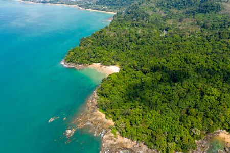 Aerial drone view of a beautiful small sandy beach surrounded by lush, green evergreen forest Stock Photo