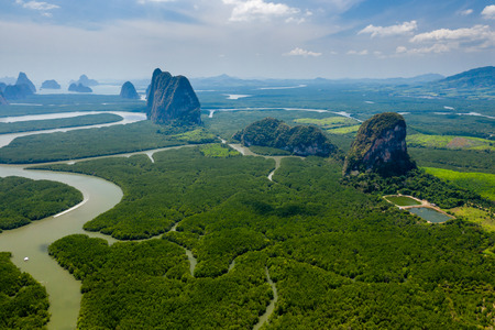 Aerial view of mangrove forest and huge limestone cliffs in southeast asia