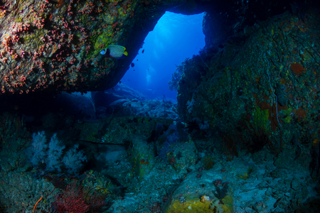 Underwater swimthrough and scenery on a tropical coral reef in Thailand's Similan Islands Banque d'images