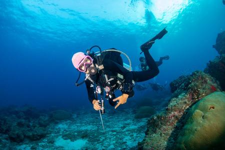 Buceador en un colorido y saludable arrecife de coral tropical Foto de archivo