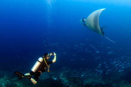 SCUBA diver with a large oceanic manta ray in a tropical ocean