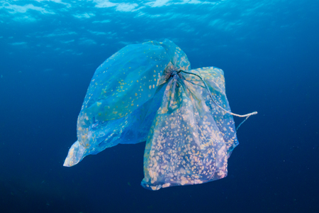 Plastic Pollution - A discarded plastic bag floats above a tropical coral reef in the Andaman Sea (Mergui Archipelago, Myanmar) Reklamní fotografie