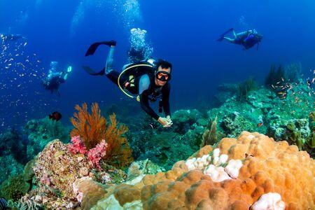 Buceadores en un colorido arrecife de coral tropical
