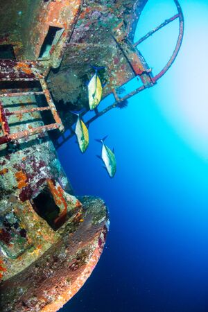 An underwater shipwreck near a coral reef in a tropical ocean (Similan Islands) Stock Photo