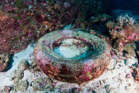 Discarded car tyre on the seafloor on a tropical coral reef in asia Reklamní fotografie