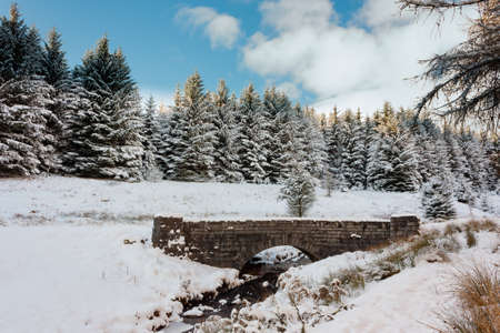 Small stone bridge over a stream in a snow covered forest landscape