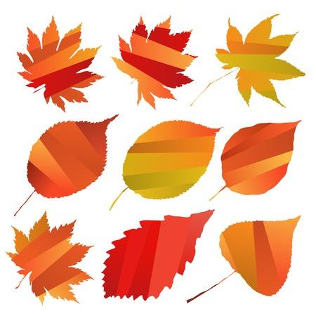 bright: Bright autumn ornament. leaves Illustration