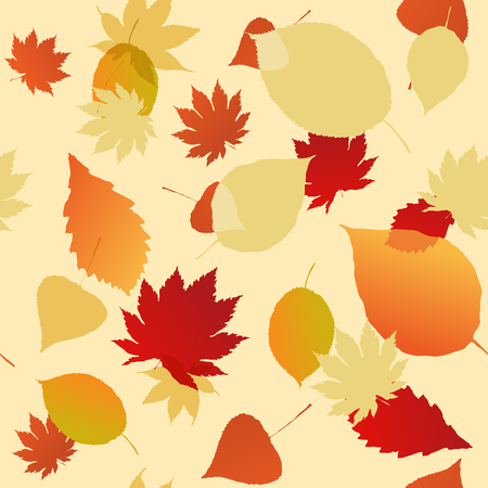 veined: Seamless pattern of autumn leaves. Various veined leaves on white background.