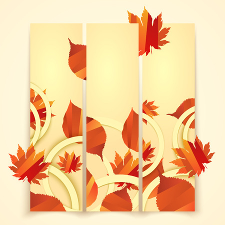 Banner with autumn leaves vector