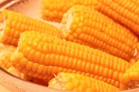 Close up yellow sweet corn grain, dense rows of boiled yellow corn seeds for background. Macro