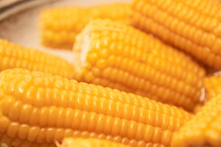 Close up yellow sweet corn grain, dense rows of boiled yellow corn seeds for background.