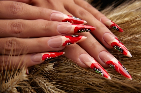 manicures beautiful pattern on nails Stock Photo - 15369012