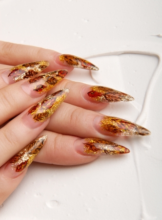 manicures beautiful pattern on nails Stock Photo - 15368907