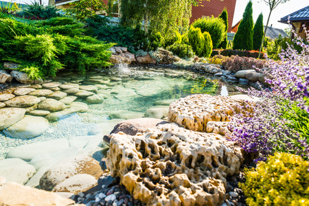 beautiful landscaping with beautiful plants and flowers Stock Photo