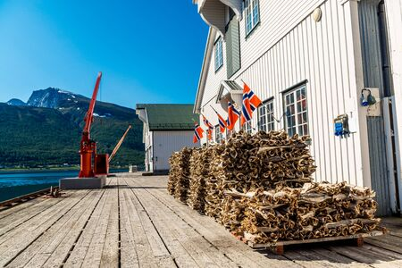 Stockfish, dried by cold air and wind, at the fishing harbor Norway Foto de archivo - 131289407