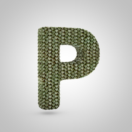 Volumetric dragon skin uppercase letter P isolated on white background. 3D rendered alphabet with detailed scales texture. Modern font for banner, poster, cover, logo design template element. Banque d'images - 119899602
