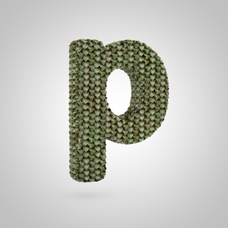 Volumetric dragon skin lowercase letter P isolated on white background. 3D rendered alphabet with detailed scales texture. Modern font for banner, poster, cover, logo design template element. Banque d'images - 119899603