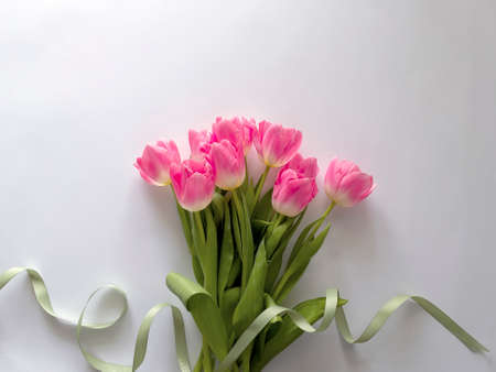 beautiful flower on a light background with place for text. Фото со стока