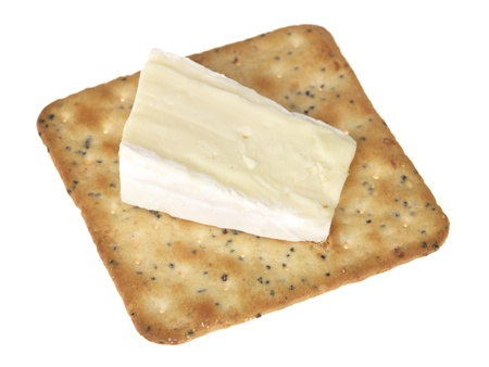 Brie with a Cracker Stock Photo - 15161709